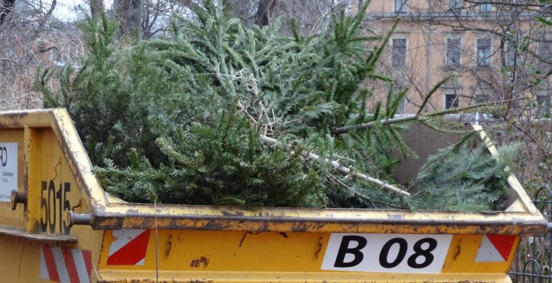weihnachtsbaum kostenlos entsorgen 105 mobile sammelstellen bis 10 januar menschen in dresden. Black Bedroom Furniture Sets. Home Design Ideas
