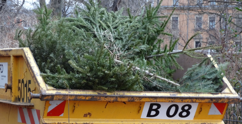 weihnachtsbaum kostenlos entsorgen 105 zus tzliche. Black Bedroom Furniture Sets. Home Design Ideas