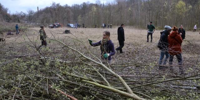 330 Plätze Für Freiwilliges ökologisches Jahr Bewerbsphase Hat