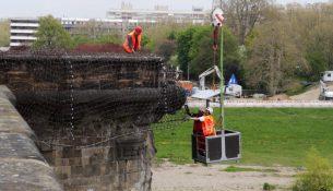 Augustusbrücke Sanierung